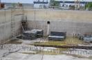 Kaskadowe biologiczne reaktory
